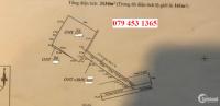 Đất mặt tiền TL835D, 3100m2, Full thổ. LH: 0794531365