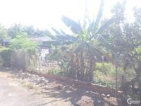 Đất thổ cư gần Khu công nghiệp Đồng Xoài 3 - 10*25 giá 115tr/m