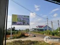 Dự án An Phước Riverside - Khu dân cư đô thị mới.