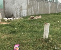 Thanh lý giảm ngay 200tr đất thổ cư tân thạnh đông củ chi
