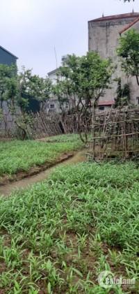 Bán 356m đất thổ cư Phường Cự Khối, Quận Long Biên, ô tô vào tận nơi