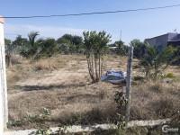 cần bán lô đất nằm tại khu vực thôn An Hòa - Xã Xuân Hải - Ninh Hải -ninh thuận
