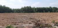 Bán gấp mấy lô đất nhà gần chợ Vĩnh Tân