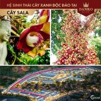 """Danko City Thái Nguyên - """"Nơi Đức Phật niết bàn là một rừng Sala"""""""