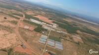 Mua là lời ngay với đất vườn Bình Thuận siêu rẻ chỉ 600 triệu/10.000m2, SHR