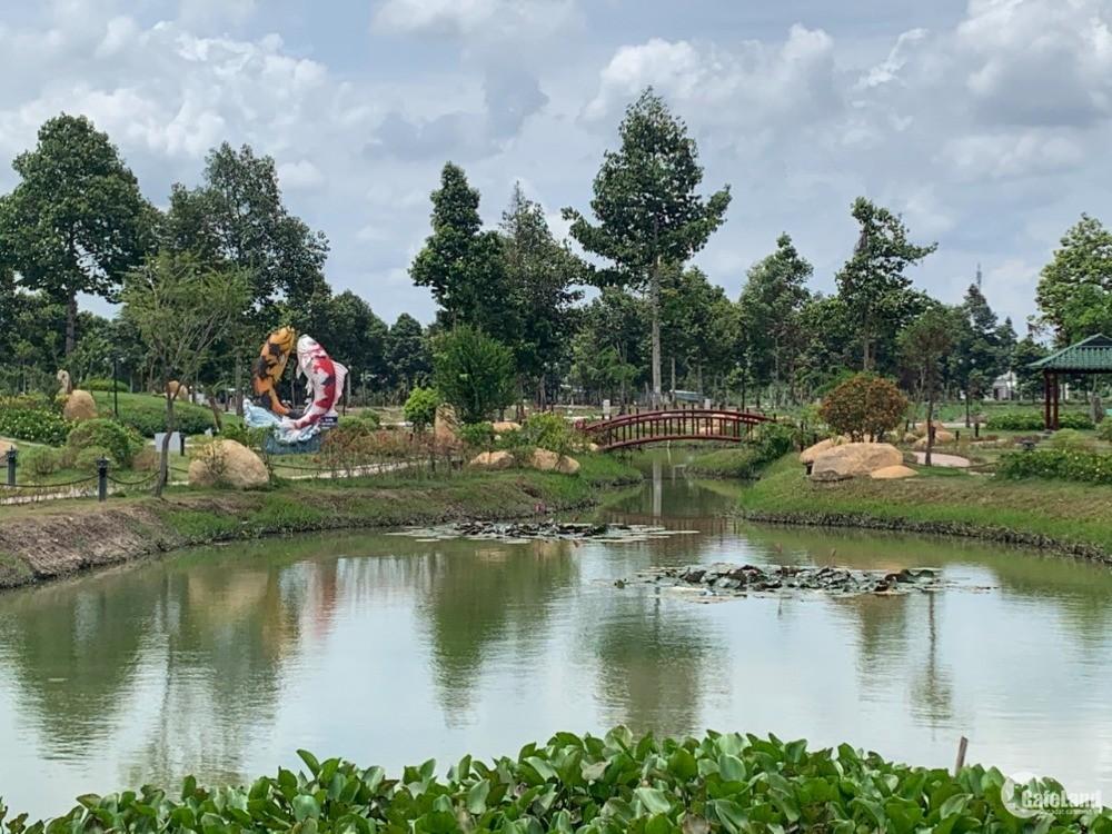 Khu hệ sinh thái cần thơ, quận bình thủy nằm trong lòng khu trung tâm