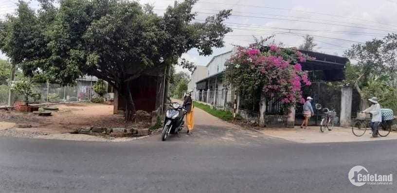 Đất thổ cư, gần UBND xã phú Hòa, Định Quán. DT 347m2 Full thổ cư