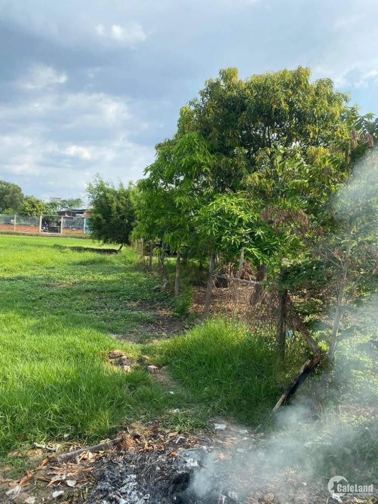 Bán Đất nằm ở xã Đức Hòa Hạ, Đức Hòa, 151m2- 1ty050