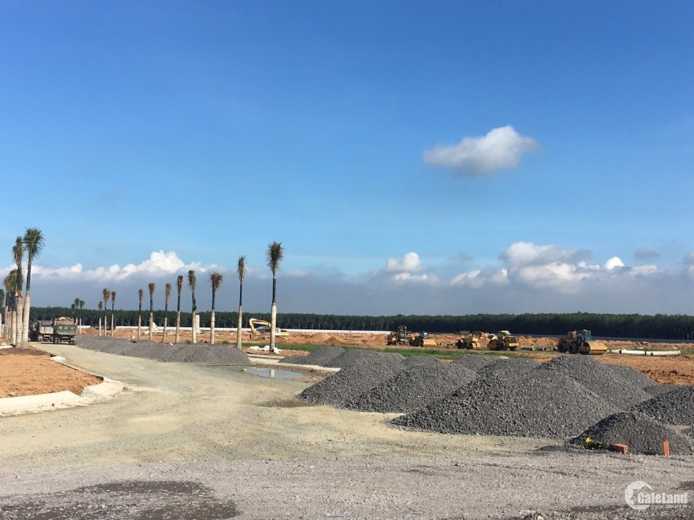 nhận đặt chỗ siêu dự án sân bay quốc tế long thành, mt dt 769, cách sân bay 5p