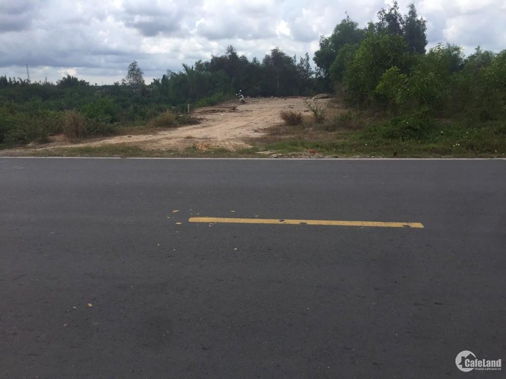 Bán đất mặt tiền Phạm Thái Bường 1000m2, xã Phước Khánh, h Nhơn Trạch, Đồng Nai