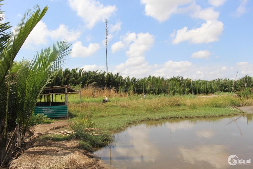 Bán đất gần mặt tiền 826C (Lê Văn Lương nối dài Long An) 1900m2 xã Phước Lại