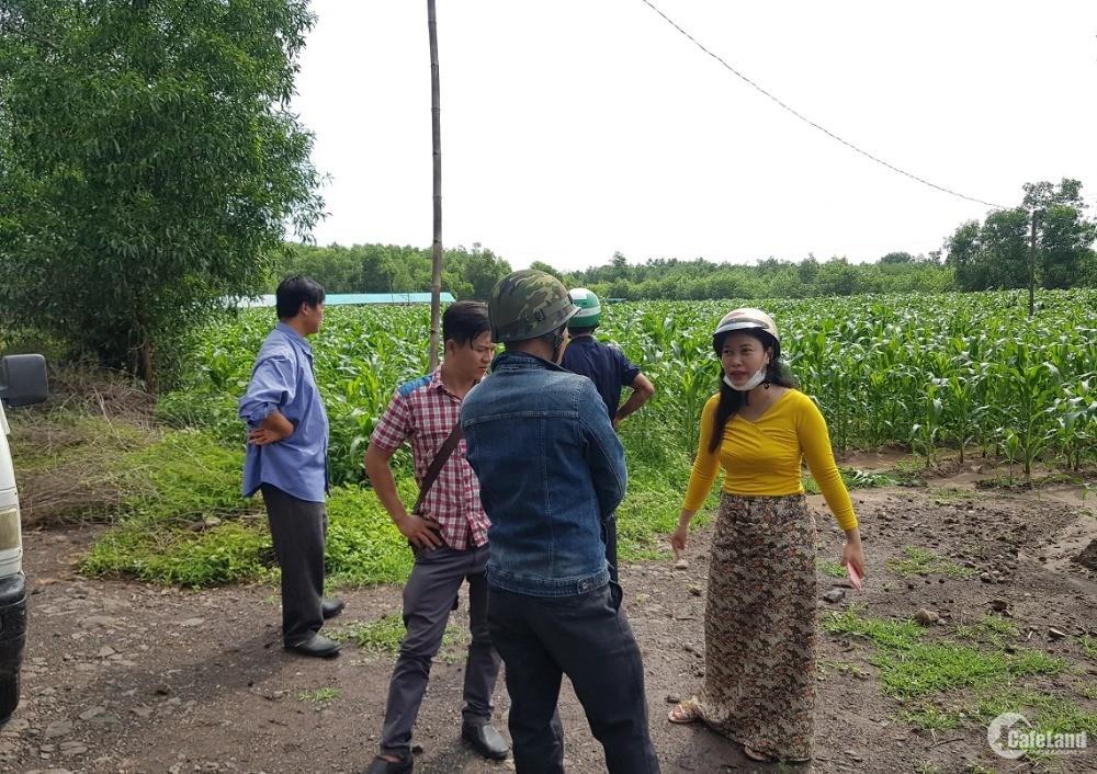 Bán 4,3 sào đất nông - lâm nghiệp tại thị trấn Đất Đỏ