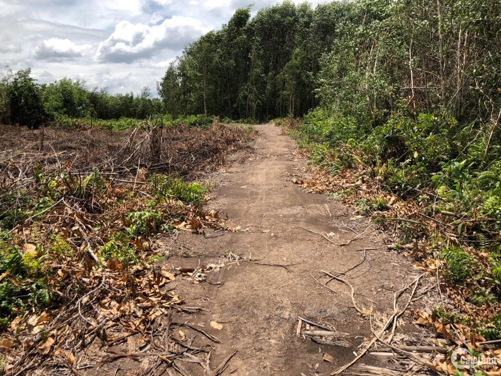 Bán 3000m2 đất nông nghiệp xã Phước Khánh, NT. Đường oto vào tới đất.