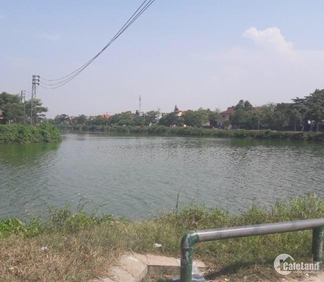 Bán đất 4 mặt tiền Lê Văn Lương nối dài Cần Giuộc -1980m- 2 tỷ