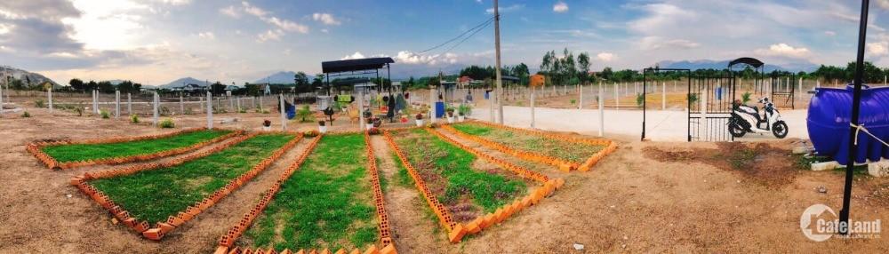 siêu phâm full thổ cư  đường 10m giá cực rẻ đất được rao vuông vứt rất đẹp
