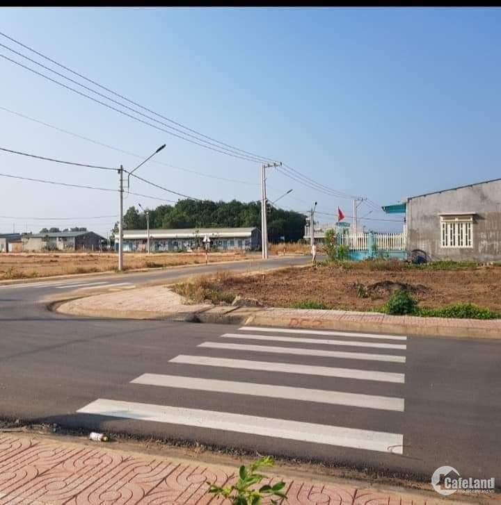 Bán 200,4m2 đất ở đô thị, thị trấn Tân Phú,Đồng Phú.Sổ sẵn XD tự do.