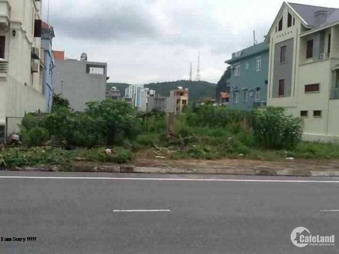 Bán Gấp 2 Lô Biệt Thự diện tích 156m2 và 185m2 SHR ,Bình Tân- Tên lửa
