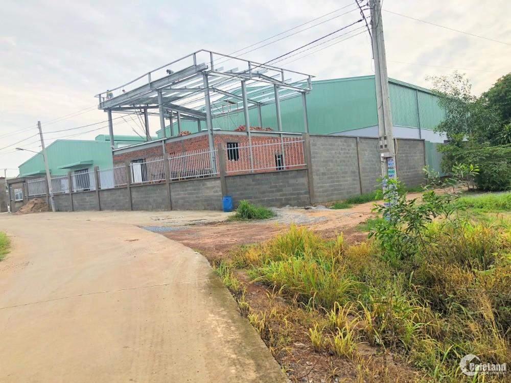 Đất Phường Vĩnh Tân Thị Xã Tân Uyên giá chỉ 2,9tr/m2 SHR từng nền