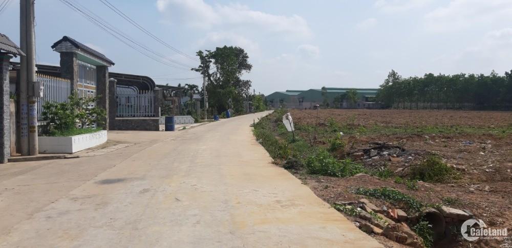 2,9tr/m2 Sổ Hồng Riêng từng lô đất ngay phường Vĩnh Tân