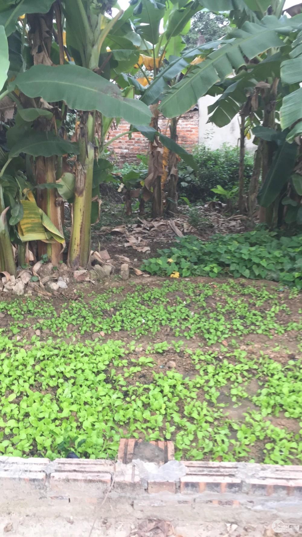 Bán mảnh đất diện tích 40.3m2 tại Ba Chữ- Vân Nội- Đông Anh- HN