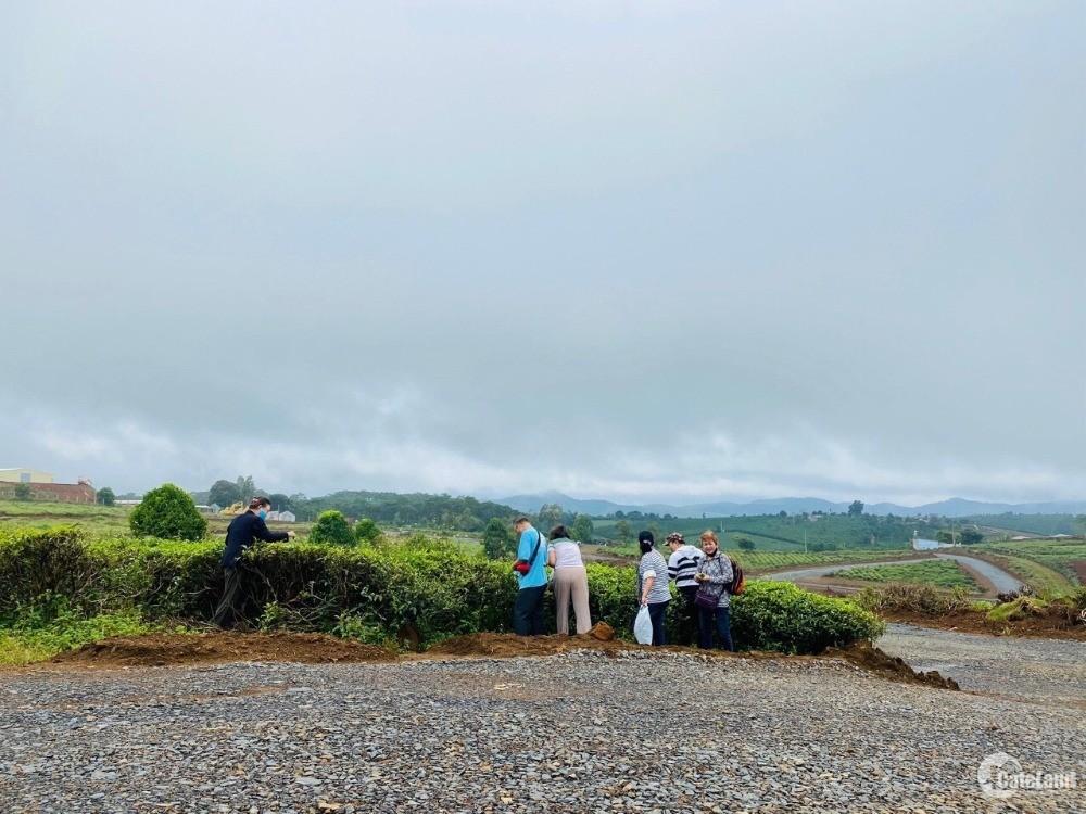 Chuyển nhượng đất làm Farm Stay ngay khu du lịch đồi chè Tâm Châu giá chỉ 800TR