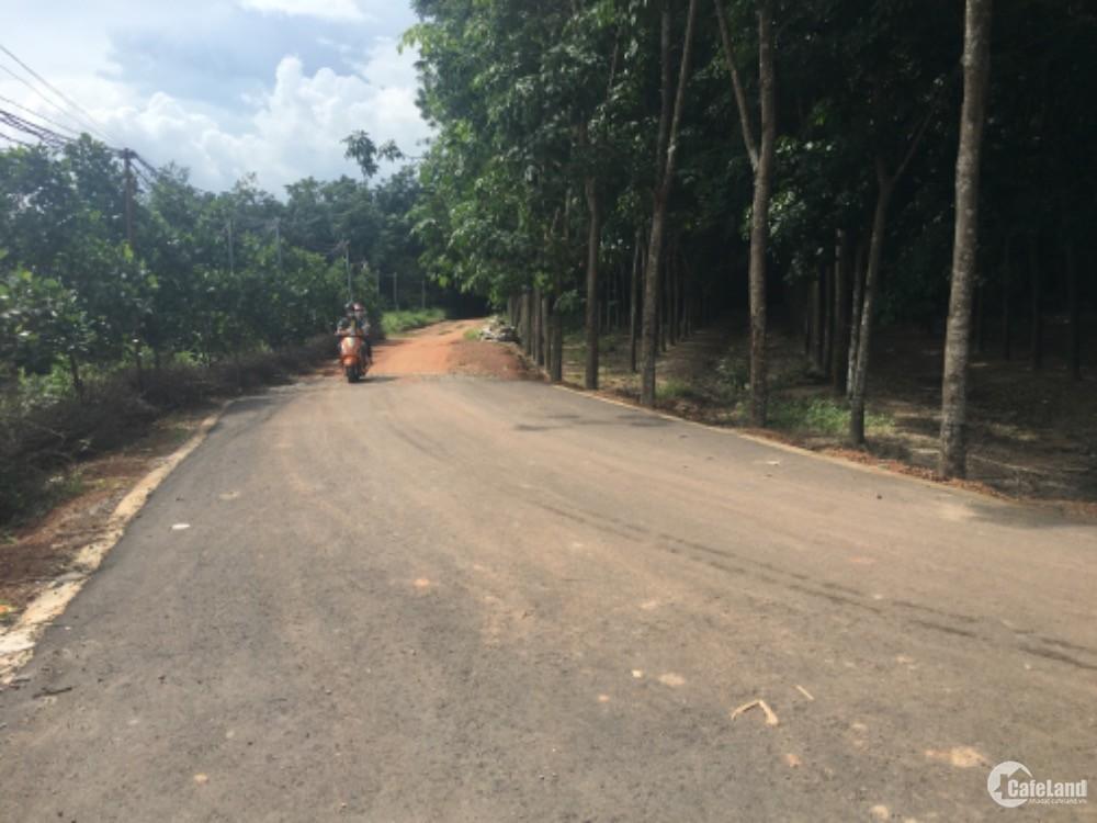 Bán đất khu vực Hoà Lợi,Bến Cát,sổ sẵn diện tích hơn 300m giá chỉ 450 triệu