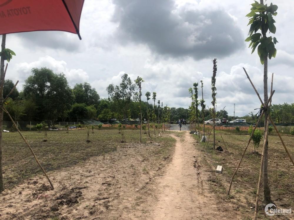 Đất vườn Củ Chi, sổ hồng riêng, công chứng ngay 242m2 giá 387tr.