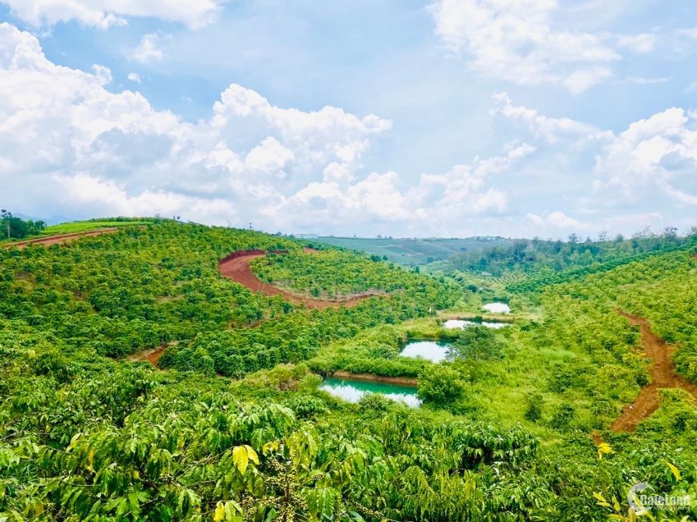 Đất nền nghỉ dưỡng ngay Damb'ri Bảo Lộc, view hồ, thổ cư 100%