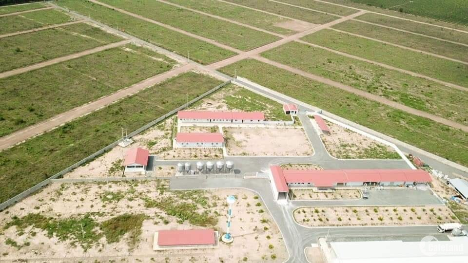 Kẹt vốn kinh doanh bán lô đất 1000m2 sổ sẵn ngay khu công nghiệp, Giá chỉ 590TR.