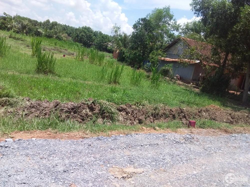 Đất thổ cư 100% cách vòng xoay Thị trấn Gò Dầu 2km