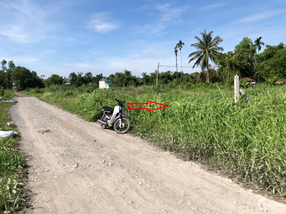Bán gấp đất thổ cư 5x24m2 2MT đường 20m ven sông Sài Gòn, xã Bình Mỹ, Củ Chi