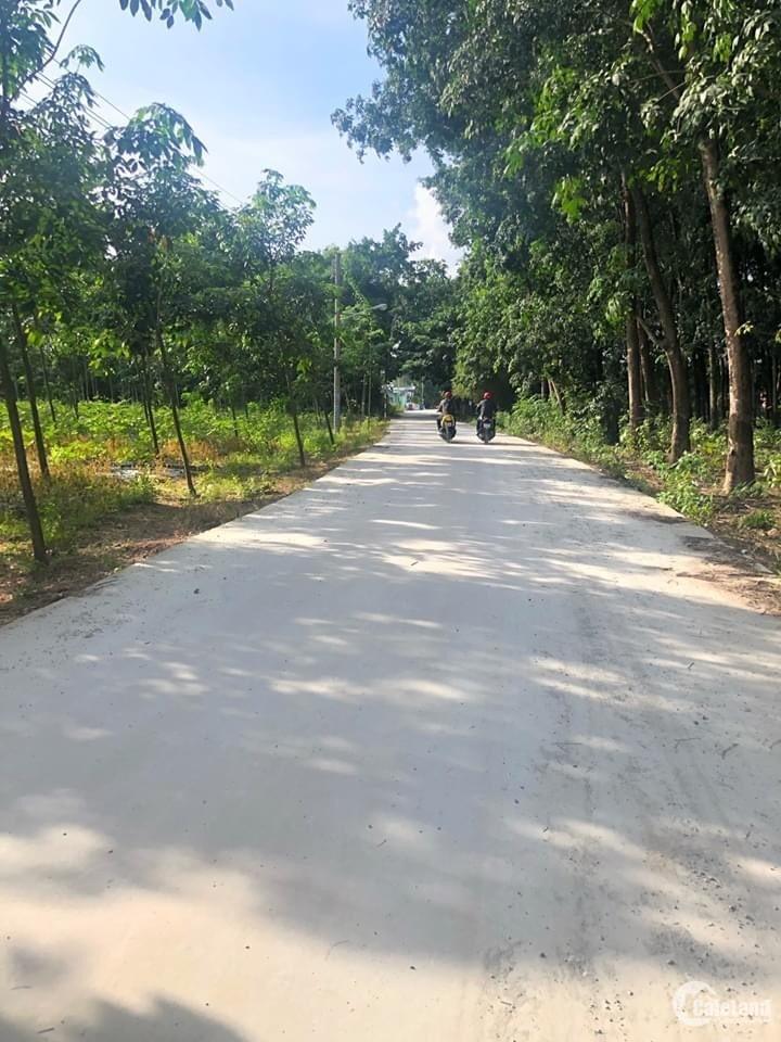 Đất Thị xã Tân Uyên 315m2 giá chỉ hơn 500tr