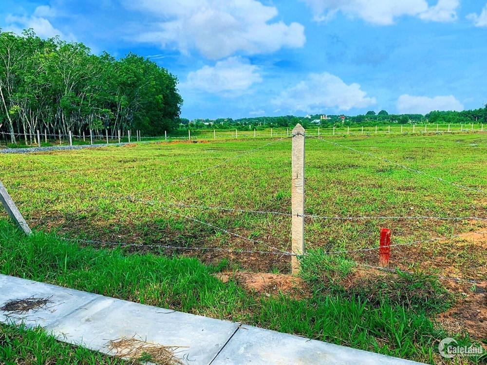 Cần bán mảnh đất vườn Củ Chi SHR 500m ngay Tỉnh lộ 7 An Nhơn Tây Củ Chi