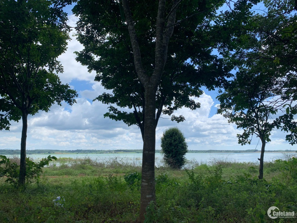 Đất sạch 11.040m2 view sông Ray. Cách hồ tràm 25km. 1.17tr/m2 có thương lượng