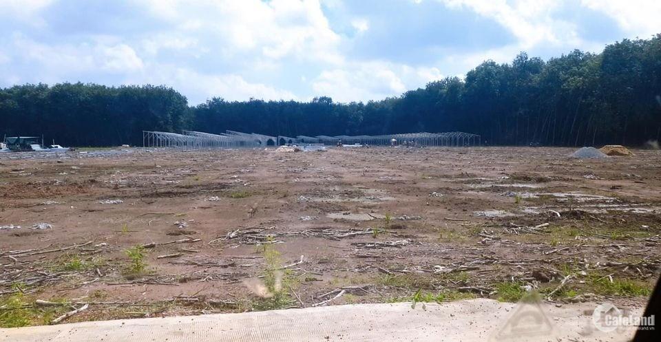 khách ký gửi đất view sông 350m2 giá 420tr