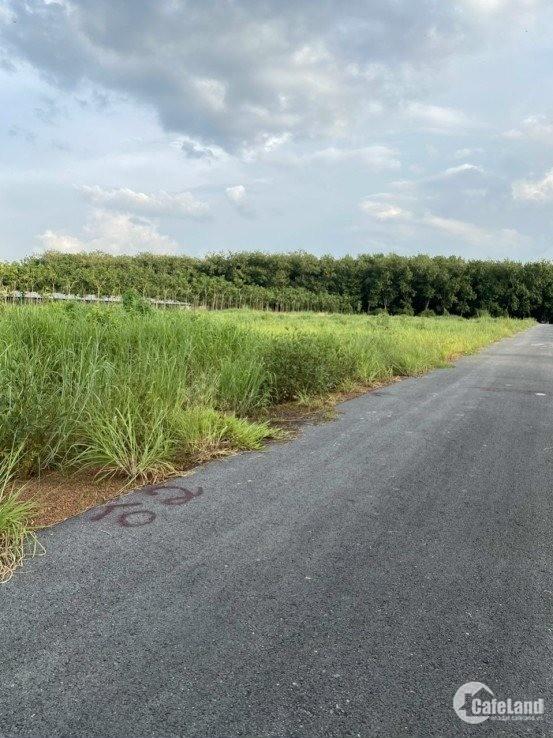 bá gấp mẫu đất xào 10396m2 giá chỉ 1 tỉ 9 ngay KCN