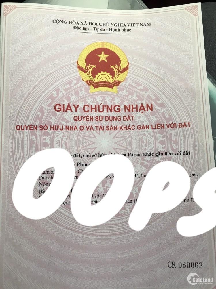 Hạ Đát 900triệu(bao sổ) cho 2,8ha tiêu,cà suối nguồn Thuận Hà Đắk Song