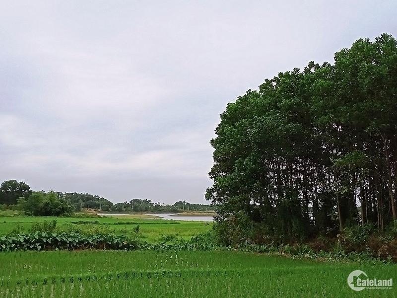 Bán đất Bắc Sơn Sóc Sơn đg 35 hồ Cầu Bãi SĐCC 3800m2 4.3tỷ