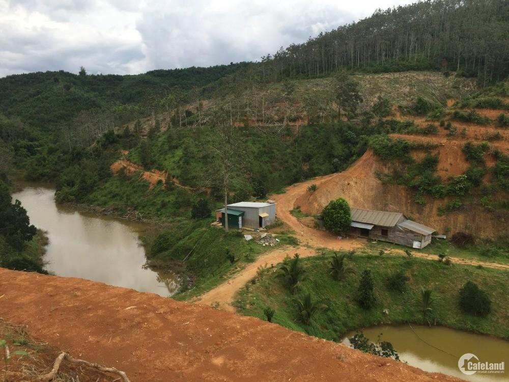 Cần San Nhượng Gấp Thửa Đất Dự Án Sinh Thái Huyện Đam Rông 34 ha Giá 18,5 tỷ