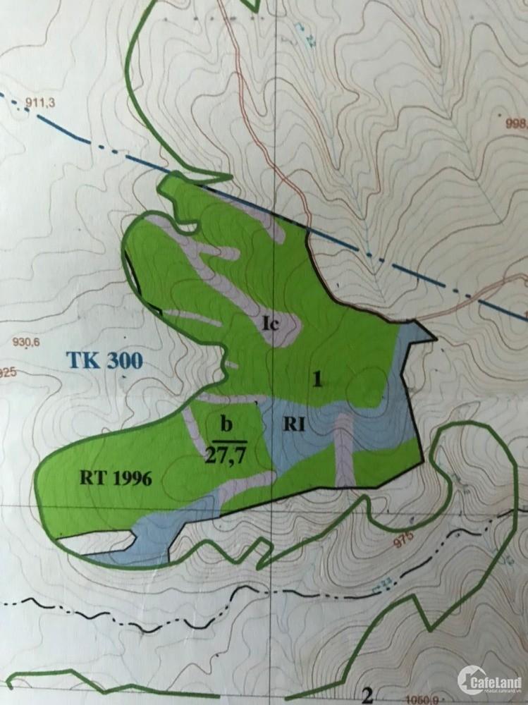 Cần San Nhượng gấp Dự Án 27 ha Đất Trồng Rừng Sản Xuất tại Đức Trọng Giá 3,5 tỷ