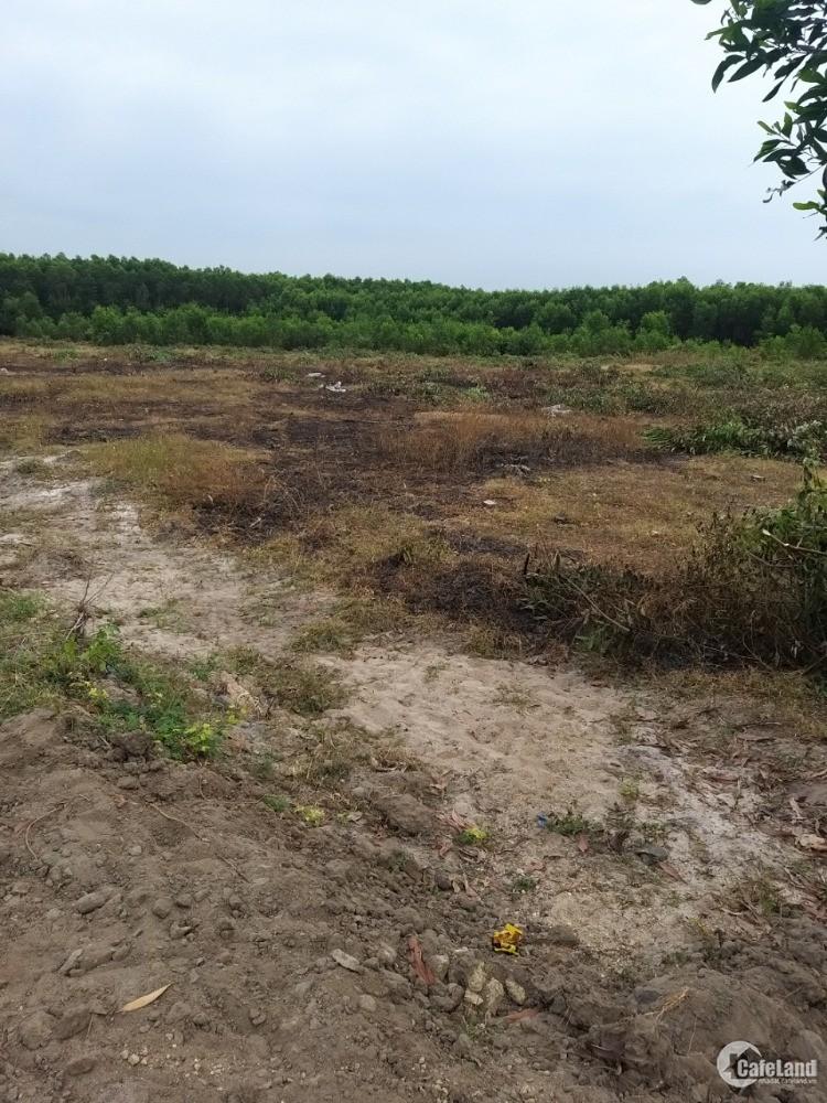 Bán Đất Vườn Liền Kề Sân Bay Lộc An - Hồ Tràm, Shr, 100m2 Thổ Cư