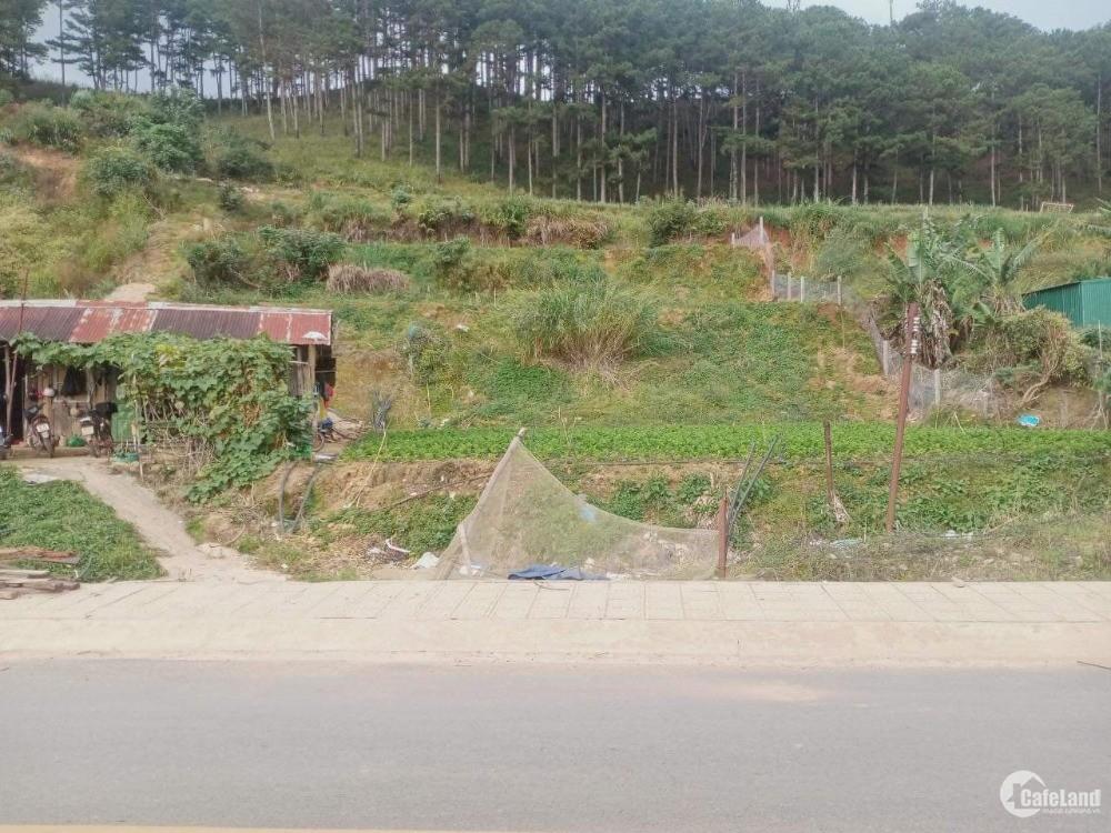 Bán Lô Đất Sổ Riêng Xây Dựng gần 600m2 siêu hot Giá Rẻ View nhìn toàn bộ phường