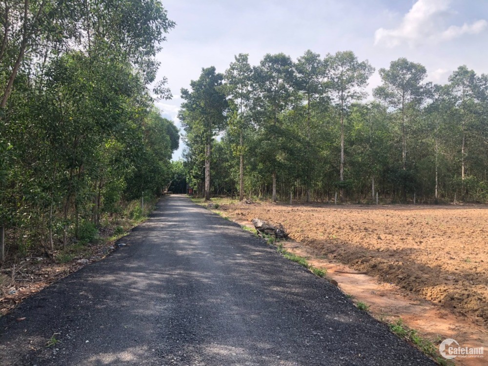 Cần bán lô đất khu bàn cờ xã Tân Hiệp, Long Thành, 92*105m, cách sân bay 2km SHR
