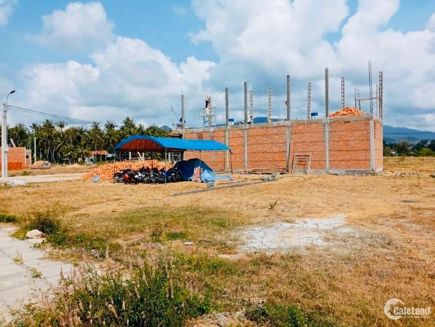Chính chủ cần bán gấp trước Tết lô đất thuộc KDC Sông Cầu – Phú Yên. Giá 480tr