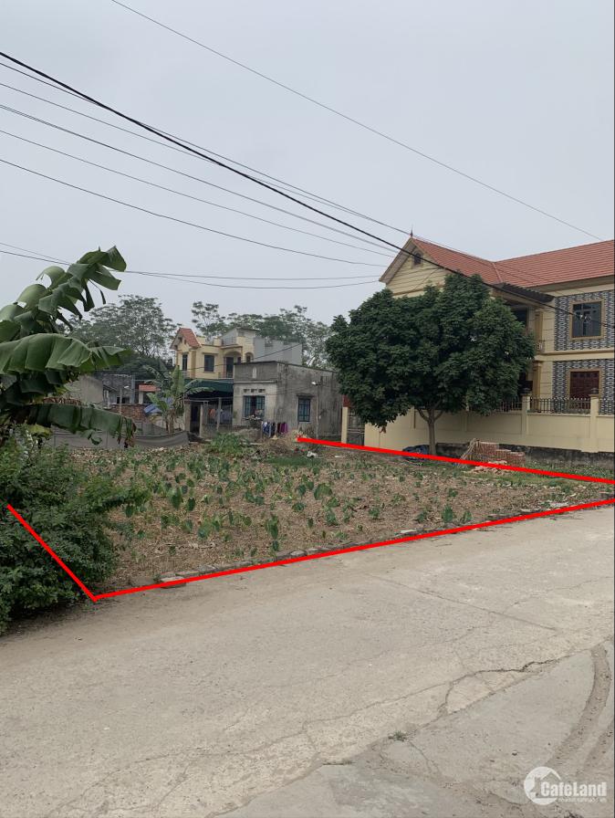 Chính chủ bán lô đất 794m2 mặt tiền đê 20m Sông Hồng Thường Tín Hà Nội