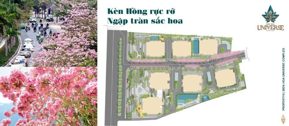 Căn hộ cao cấp MT đường QL1A, Tp Biên Hoà, 2PN - 74 m2 giá 2.45 tỷ