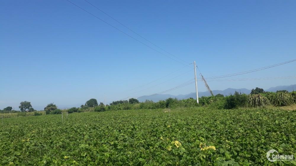 Bán đất vườn hồng thái chỉ 80k/m2 cách bàu trắng 4km liên xã 200m Lh 0385230667