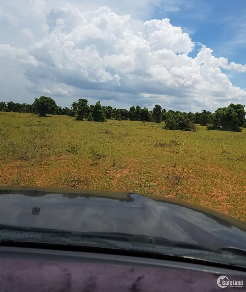 Bán 15,804m2 đất nông nghiệp hồng thái mặt tiền liên huyện 130k/m2.