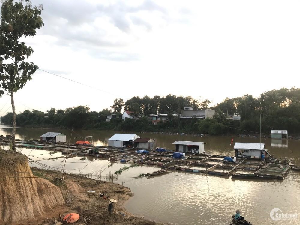 Đất vườn ngay làng bè Sông Đồng Nai - Định Quán