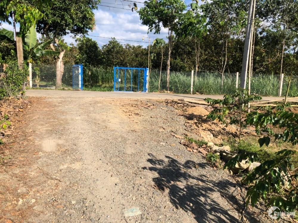 Bán gấp đất vườn bưởi chính chủ-Ngọc Định,Định Quán,Đồng Nai